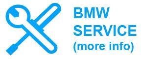 bmw service info